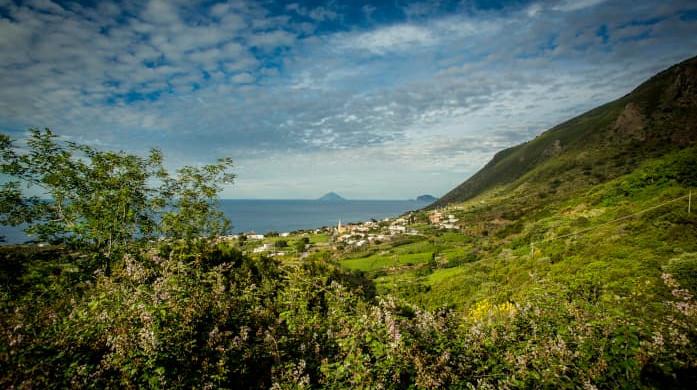 Salina green island